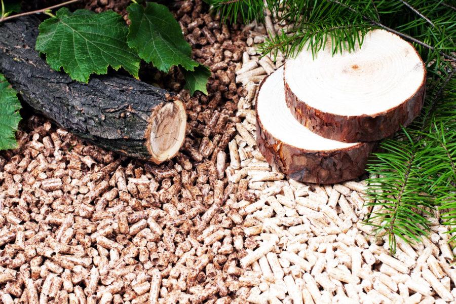 Pelety z kvalitního dřeva
